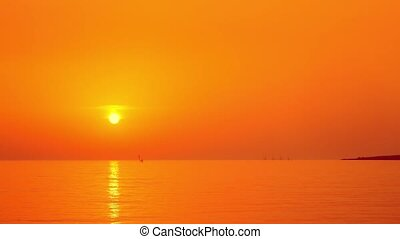Sea windsurfers on the orange sunset