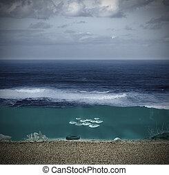 seabed, paisagem, oceânicos