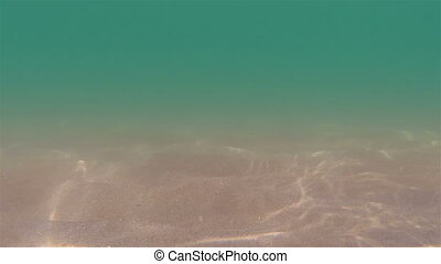 Seabed - Underwater Sea life. Sun rays