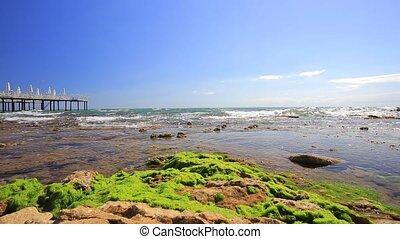 Seacoast - Sea coast of the Mediterranean Sea