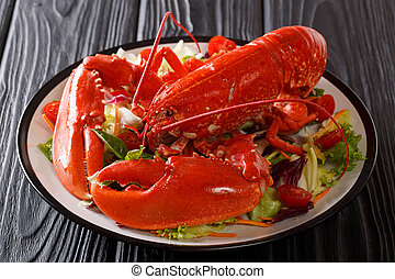 Seafood background. red lobster with fresh vegetable salad on a plate close-up. horizontal