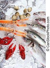seafood in market over ice - Seabass, mackerel, hake fish, ...