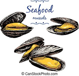 Seafood. Mussels. Set of hand drawn graphic illustrations.