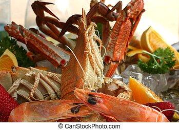 Seafood Platter - Close up of fresh seafood platter