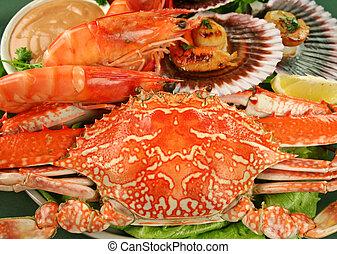 Seafood Platter - Fresh seafood platter of cooked shrimps,...