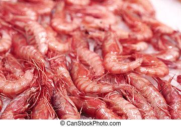 Seafood, shrimp, Central Market, Mercado Central, Valencia, Valencian Community, Spain