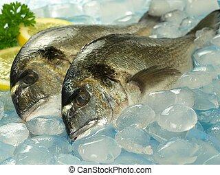 Two raw dorado fish on seafood stall