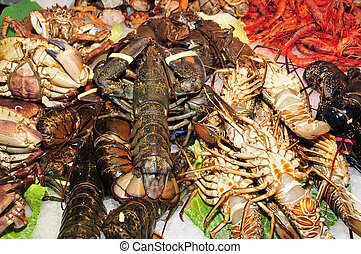 seafood - different kinds of shellfish in a fish and seafood...