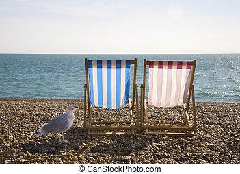 Seagul and Deckchairs, Brighton