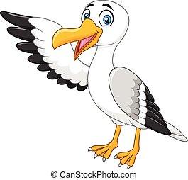 seagull, aflægger, isoleret, cartoon