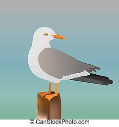 Seagull - An illustration of a seagull standing on a pole