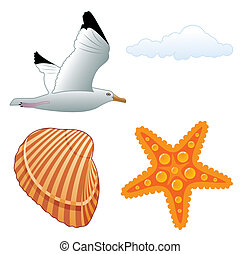 Seagull and shell - Collect summer element for design,...