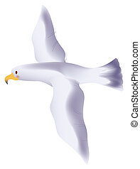 Big white seagull flying in a white background