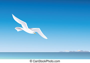 Seagull and sea background.
