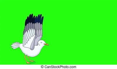 Seagull flies up into the sky. Handmade animated looped footage isolated on green screen