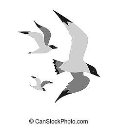 Seagull flight icon