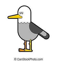 Seagull isolated. gull Bird marine. Vector illustration