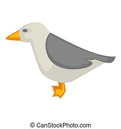 Seagull isolated on white vector colorful graphic illustration