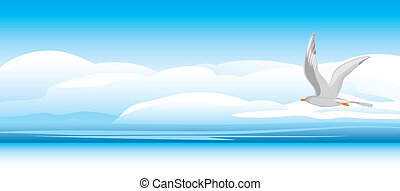 Seagull on a skyscape background. Vector illustration