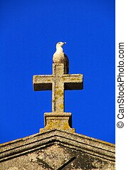 Seagull perched on top of a stone cross