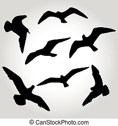 seagull silhouette vector illustration
