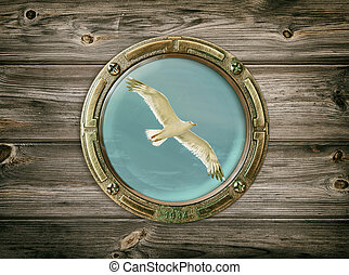 Seagull - View Of The Seagull Through A Porthole
