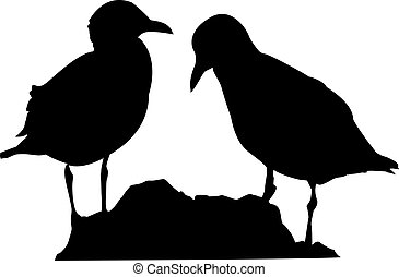 Seagulls - a silhouette of two seagulls standing on the...
