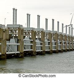 Seagulls around the Oosterschelde Storm Barrier - Seagulls...
