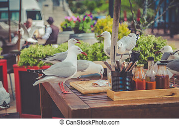 Seagulls at the wooden outdoor cafe table picking up scraps after someones lunch in Nelson, New Zealand