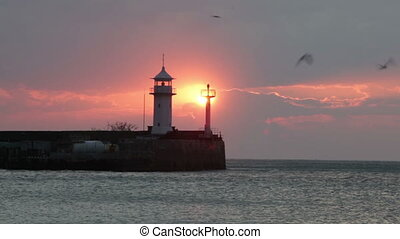 Seagulls fly over the lighthouse during sunrise. Yalta. Crimea