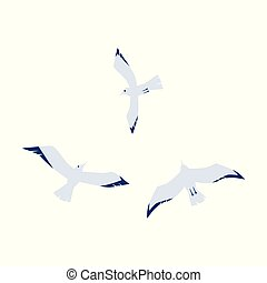 Seagulls in a flat cartoon style isolated on white background.