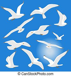 Seagulls isolated on blue background. Vector illustration....