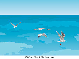 Seagulls on the sea - The vector image of seagulls flying...