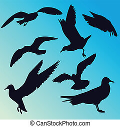 Seagulls silhouettes - Some vector silhouettes of seagulls...
