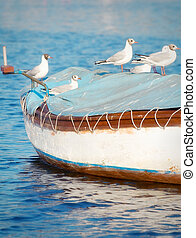 Seagulls standing on top of a small wooden boat