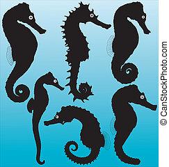 seahorse, silhouettes, vecteur