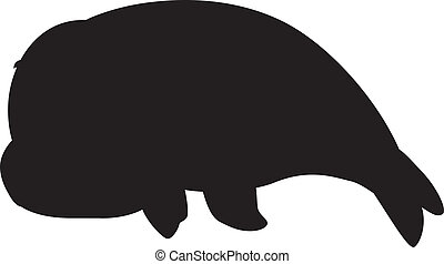 Seal Silhouette