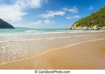 Sealers Cove Shoreline - Sealers Cove shoreline in Wilsons...