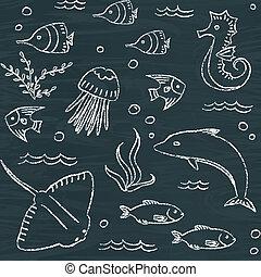 sealife, motívum, chalkboard, seamless