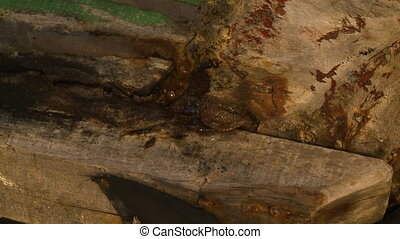Sealing a fishing canoe joint, Ngapali , Myanmar - Extreme ...