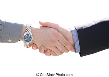Sealing The Deal - Two business people shaking hands. The...