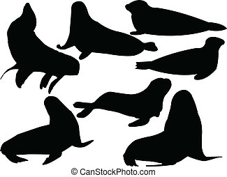 seals collection - vector