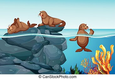 Seals living in the sea illustration