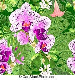 seamless, 手ざわり, 熱帯の花, 蘭, phalaenopsis, そして, monstera,...