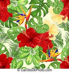 seamless, 手ざわり, 熱帯の花, strelitzia, そして, 黄色, そして, 赤, ハイビスカス,...