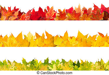 Seamless autumn maple leaves - Seamless pattern of colored...