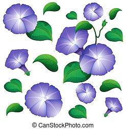 Seamless background design with morning glory flowers...