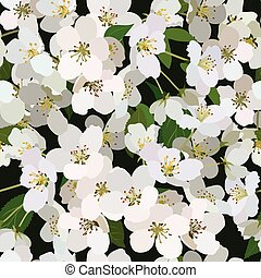 Seamless background from bunch of blossoming apple tree flowers