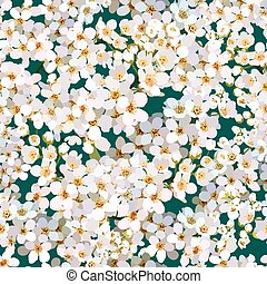 Seamless background of blossoming apple tree flowers