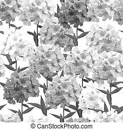 Seamless background of pink phlox. Hydrangea. Vector illustration, EPS 10